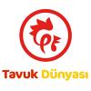 tavuk-dunyasi