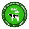 tire-sut
